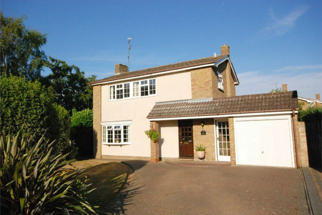 Thumbnail Detached house for sale in Humber Road, Chelmsford, Essex