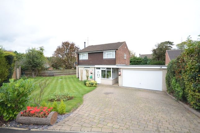 Thumbnail Detached house to rent in Almond Close, Old Basing, Basingstoke