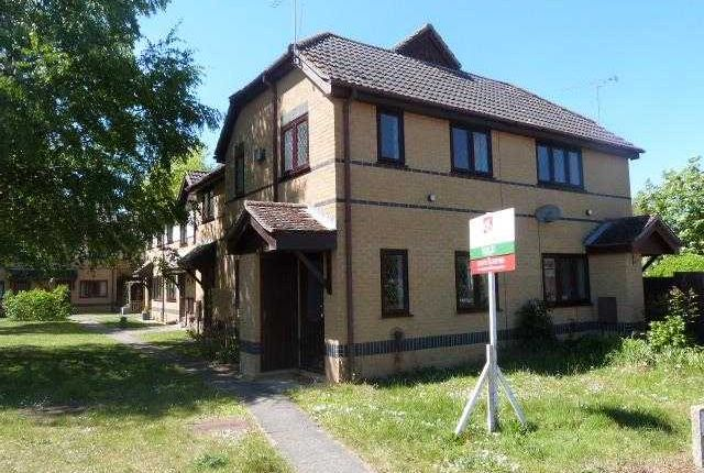 Thumbnail Terraced house to rent in Holm Court, Wainwright Way, Kesgrave, Ipswich