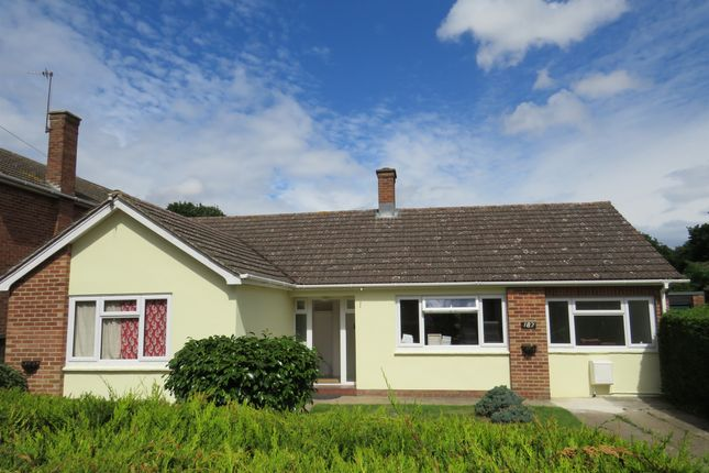 Thumbnail Detached bungalow for sale in St. Johns Road, Colchester