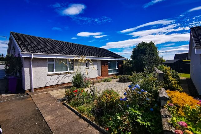 3 bed bungalow to rent in Sanderson Place, Newbigging, Dundee DD5