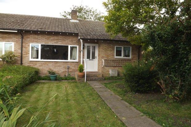 Thumbnail Bungalow to rent in Poplar Close, Great Shelford, Cambridge