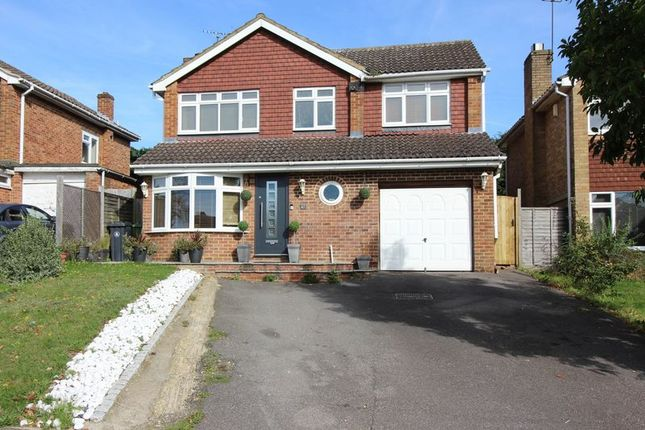 Thumbnail Detached house to rent in Alphington Avenue, Frimley, Camberley