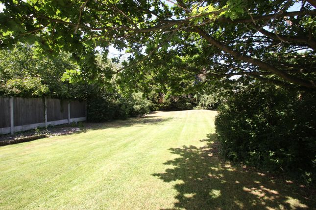 Thumbnail Semi-detached bungalow for sale in Rochford Hall Close, Rochford
