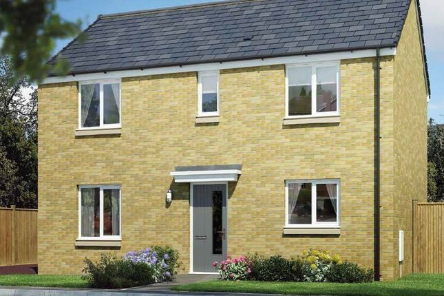 """Thumbnail Detached house for sale in """"The Dunblane"""" at The Wisp, Edinburgh"""