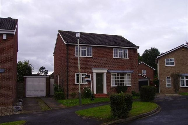 Thumbnail Detached house to rent in Rossway, Darlington
