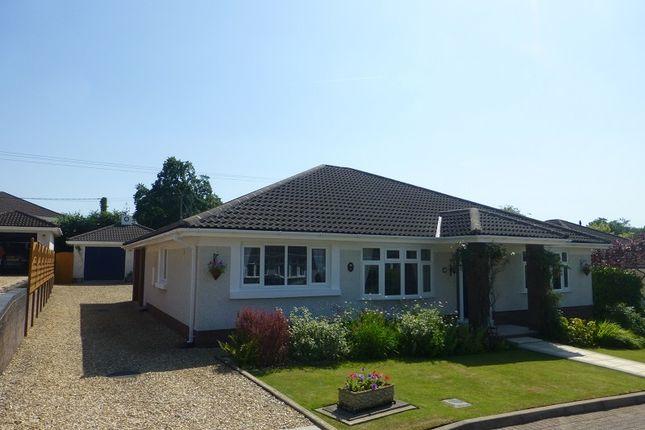 Thumbnail Bungalow for sale in Maes Yr Helyg, Llandybie, Ammanford, Carmarthenshire.