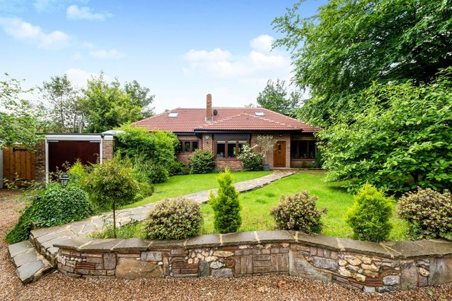 Thumbnail Detached bungalow for sale in Stanstead Road, Caterham