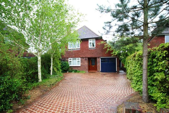 Thumbnail Detached house for sale in Clive Avenue, Ipswich