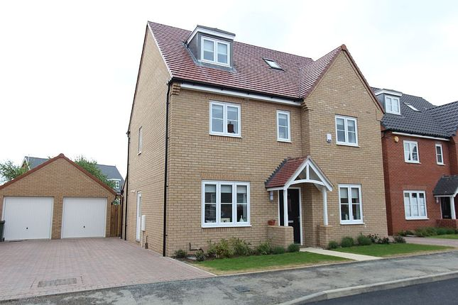Thumbnail Detached house for sale in Stamford Drive, Dunton Fields, Basildon, Essex