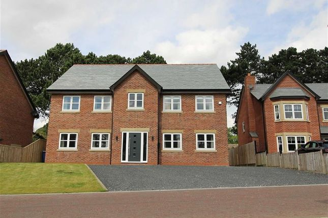Thumbnail Detached house for sale in Farington Lodge Gardens, Farington, Leyland