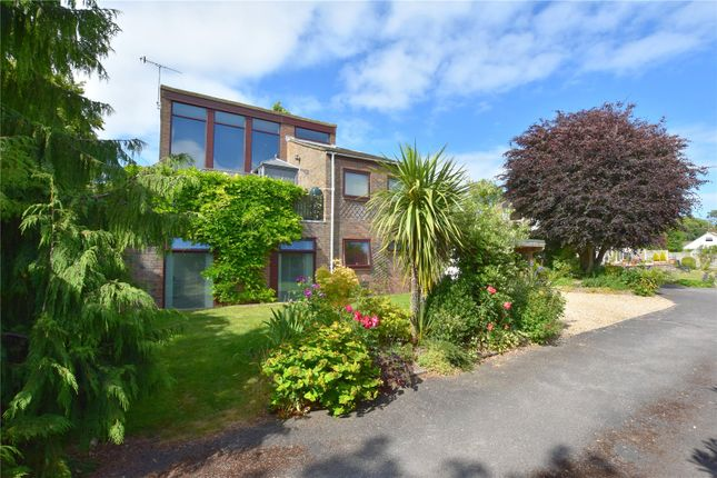 Thumbnail Detached house for sale in Mill Road, North Lancing, West Sussex