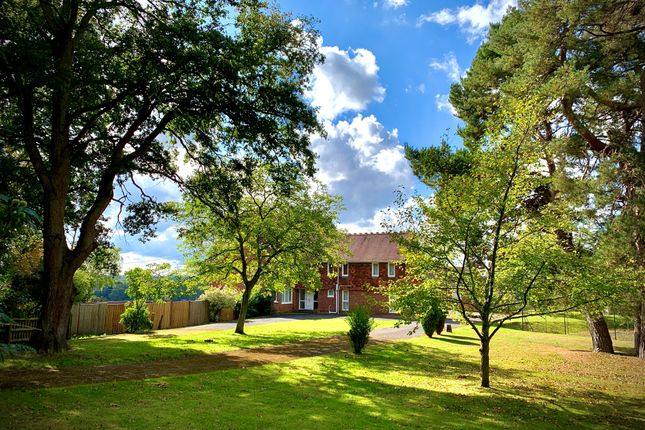 Thumbnail Equestrian property for sale in Gardeners Lane, East Wellow, Romsey