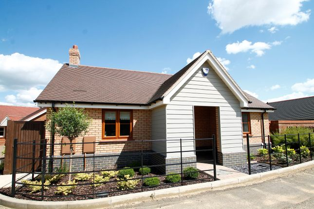 Thumbnail Detached bungalow for sale in Broadlands Way, Ipswich