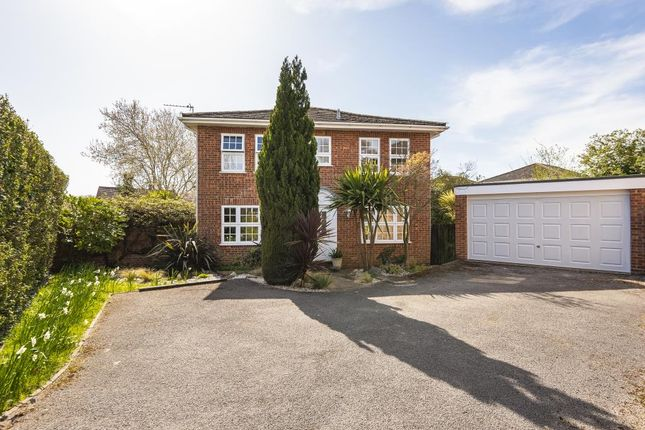 Thumbnail Detached house for sale in Bisley, Surrey