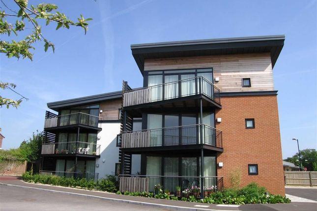 Thumbnail Flat to rent in Maplespeen Court, Newbury