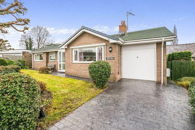 Thumbnail Bungalow for sale in Old Hall Park, Guilden Sutton, Chester