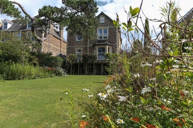 Thumbnail Detached house for sale in The Avenue, Clevedon