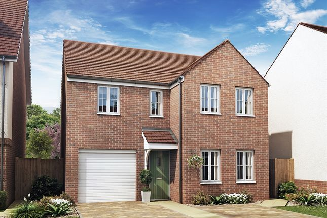"Thumbnail Detached house for sale in ""The Kendal"" at Rattle Road, Stone Cross, Pevensey"