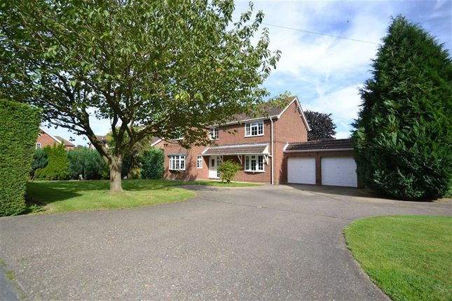 Thumbnail Property for sale in Main Road, Beelsby, Grimsby