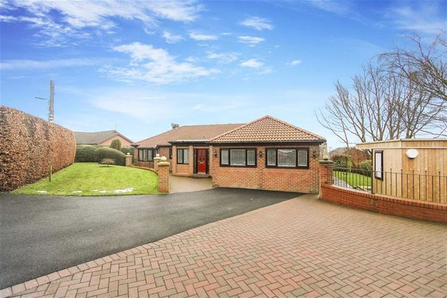 Thumbnail Bungalow for sale in Chapel Street, Tantobie, County Durham