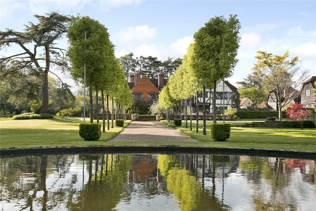 Thumbnail Detached house to rent in Alfold Road, Dunsfold, Godalming
