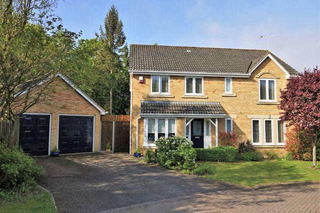 Thumbnail Detached house for sale in Beaumaris Gardens, Hythe, Southampton