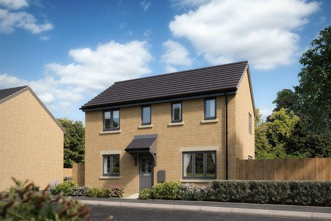 """Thumbnail Detached house for sale in """"The Clayton """" at Blackberry Road, Frome"""