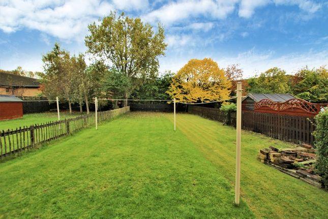 Garden of Ghillies Lane, Motherwell ML1