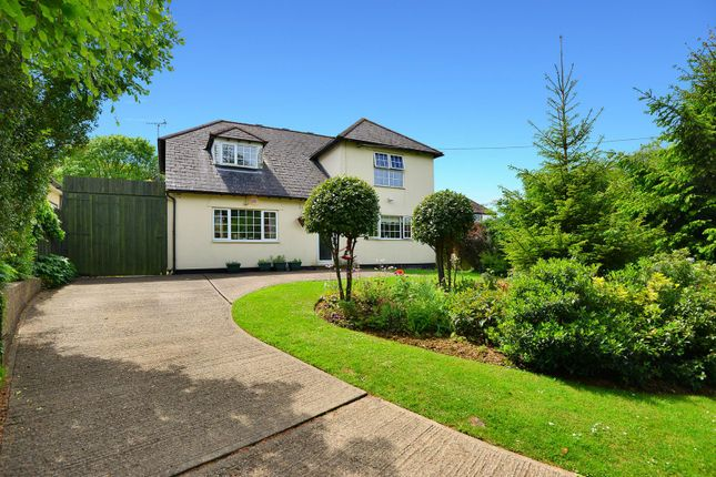 Thumbnail Detached house for sale in Westcourt Lane, Shepherdswell, Dover