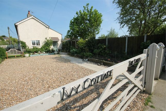 Thumbnail Cottage for sale in The Street, Kirby-Le-Soken, Frinton-On-Sea