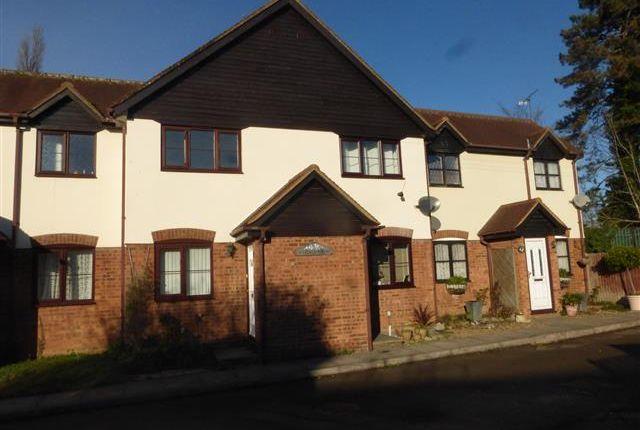 Thumbnail Property to rent in Dymoke Mews, Church Lane, Stevenage