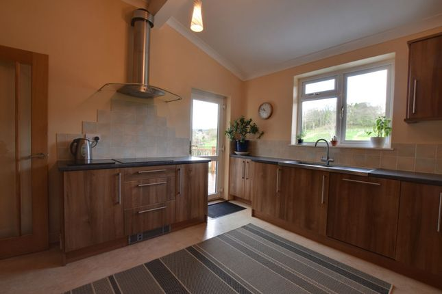 Thumbnail Semi-detached house for sale in Trusham, Newton Abbot, Devon