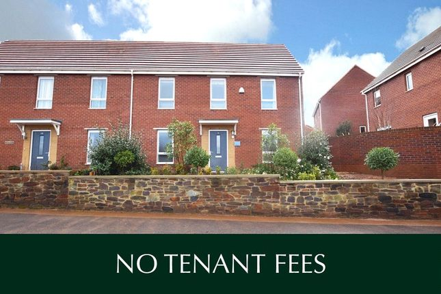 Thumbnail Semi-detached house to rent in Staddle Stone Road, Exeter