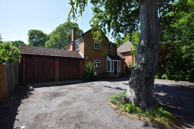 Thumbnail Detached house to rent in Prospect Avenue, Farnborough