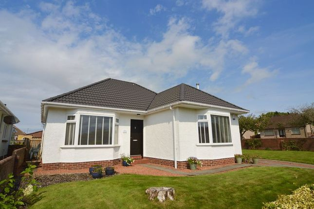 Thumbnail Detached bungalow for sale in Cherry Hill Road, Alloway, Ayr