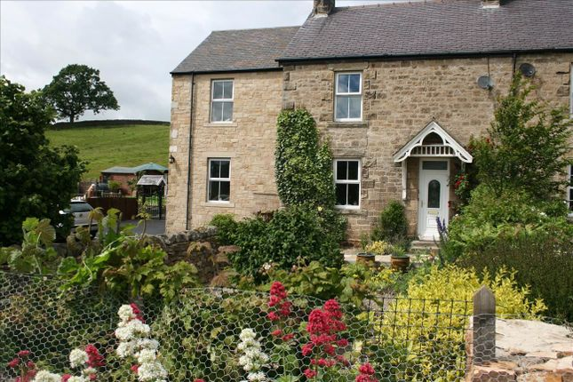 Thumbnail Semi-detached house to rent in Bardon Mill, Hexham