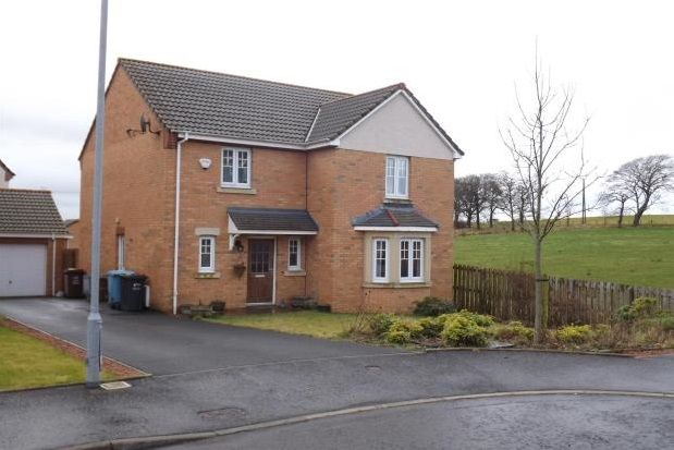 Thumbnail Detached house to rent in Haldon Grove, Glenboig, Coatbridge