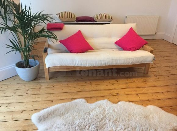 Thumbnail Shared accommodation to rent in Houndiscombe Road, Plymouth, Plymouth