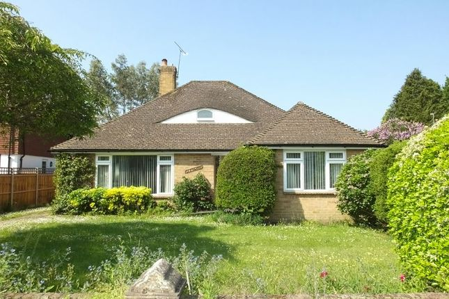 Thumbnail Bungalow for sale in Horsell Rise, Horsell, Woking