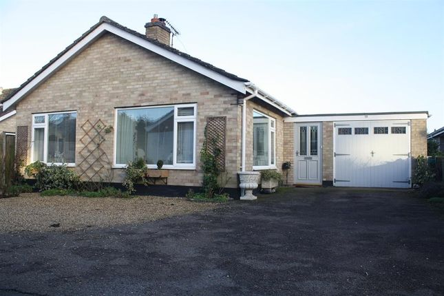 Thumbnail Bungalow for sale in Homefield Paddock, Beccles