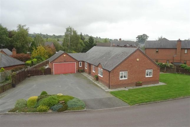 Thumbnail Detached bungalow for sale in Pren Helyg, 16, Withy Avenue, Forden, Welshpool, Powys