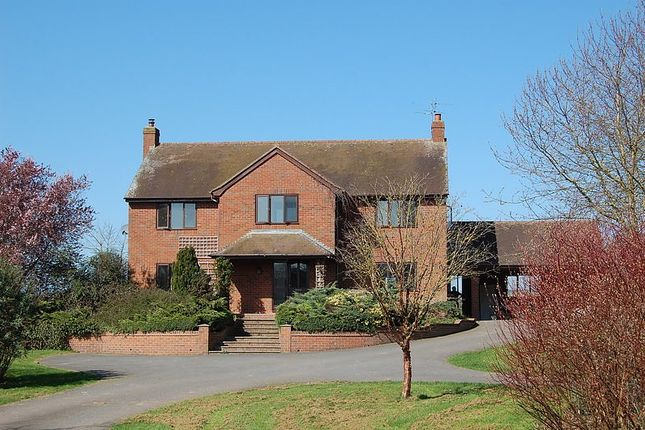 Thumbnail Detached house to rent in Lower Hayton, Ludlow, Shropshire