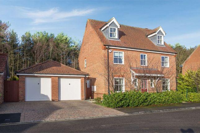 Thumbnail Detached house for sale in The Wynd, Wynyard, Billingham, Durham