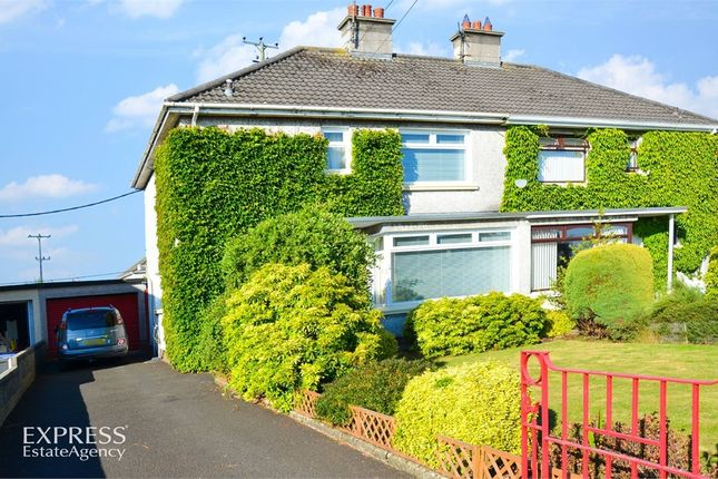 Thumbnail Semi-detached house for sale in Chestnut Grove, Ballymoney, County Antrim