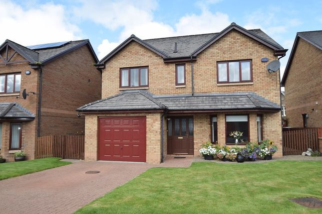 Thumbnail Detached house for sale in Mercat Loan, Biggar