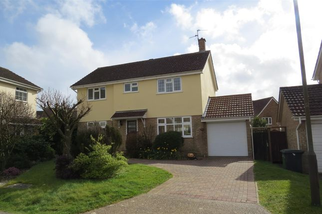 Thumbnail Detached house to rent in Agincourt Close, St Leonards-On-Sea, East Sussex