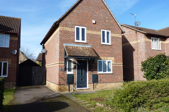 Thumbnail Detached house to rent in Juniper Gardens, Bicester