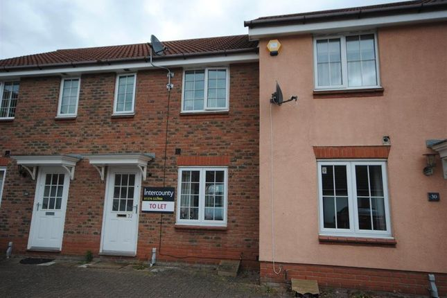 Thumbnail Detached house to rent in Lammas Drive, Braintree