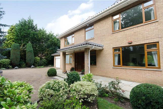 Thumbnail Detached house to rent in Coombe Ridings, Kingston Hill, Kingston Upon Thames